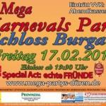 3_Mega_Karnevals_Party_17022012